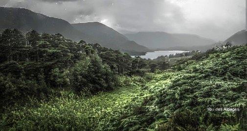 Ecosse - quelque part sur l'Ile de Skye