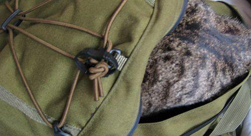 Sac à chaton militaire